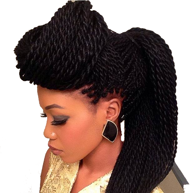 Tresses twists locks for Salon locks twists tresses